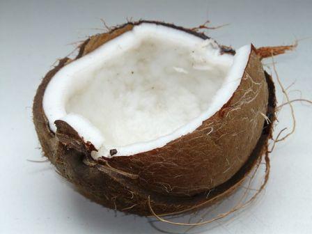 800px-Coconut-60395_-_Hans_Braxmeier