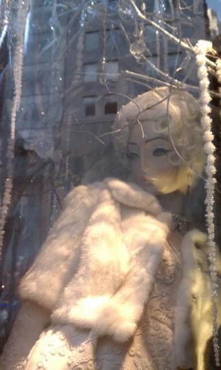bg winter window
