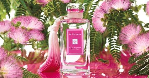 silk-blossom-1[1]