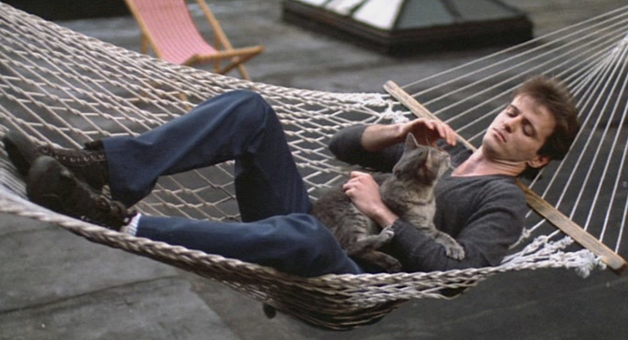 aidan quinn and cat