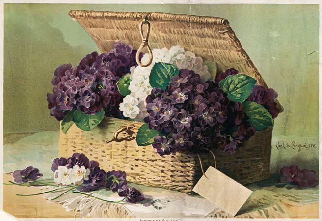 800px-Invoice_of_Violets_(Boston_Public_Library)